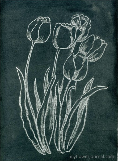 How to do Anthropologie inspired flower chalkboard art-myflowerjournal