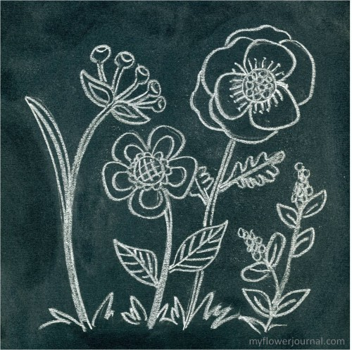 How to do Anthropologie Inspired Chalk Art-myflowerjournal.com