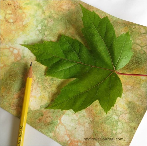 Fall Botanical Bubble Art Tutorial-trace around a leaf-myflowerjournal