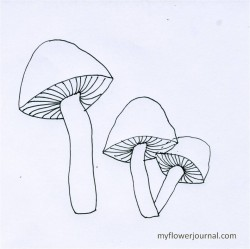 Mushroom outline for fall botanical bubble painting.