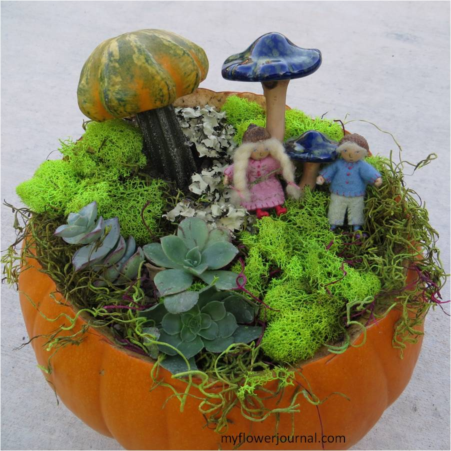 wee folk pumpkin garden my flower journal. Black Bedroom Furniture Sets. Home Design Ideas