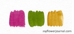 Color Swatches in Watercolor-Purple Cone Flower-myflowerjournal.com