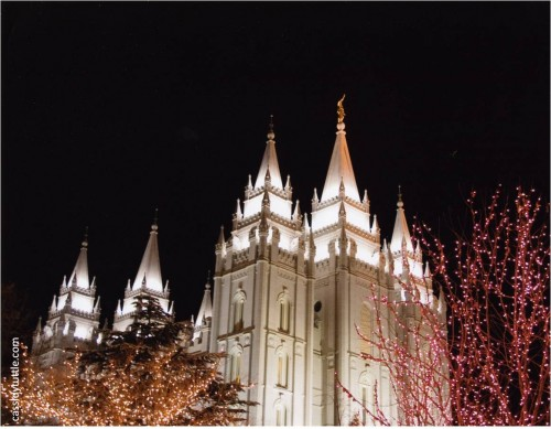 Christmas Lights on Temple Square photo by Cassidy Tuttle-myflowerjournal