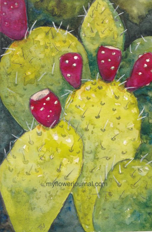 I used a white Uni-ball Gel Pen to add the needles to this prickly pear watercolor painting. I love using a white gel pen for finishing touches on a watercolor painting. myflowerjournal.com