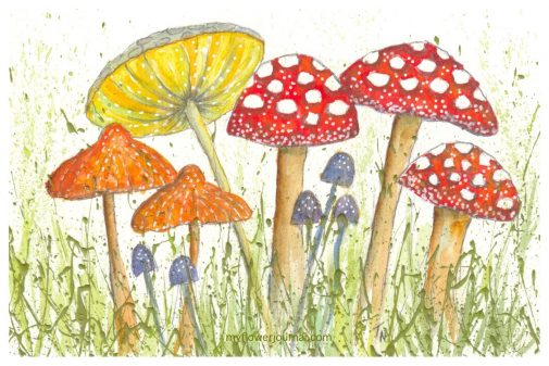 Its so fun to add watercolor mushrooms to splattered acrylic paint. Learn more on myflowerjournal.com