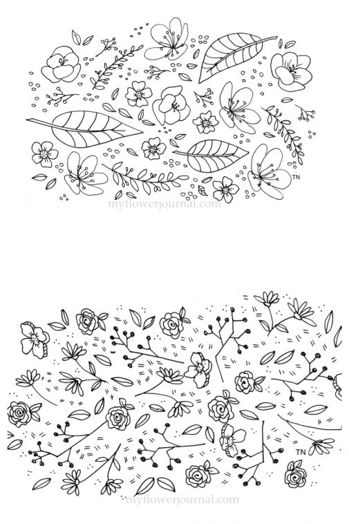 Black and White botanical line drawings and doodles I drew after practicing in my Botanical Line Drawing Book. myflowerjoural.com
