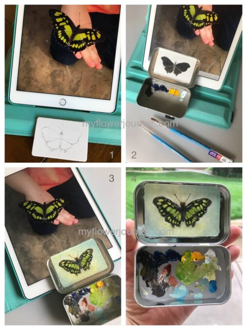 This is how I did my butterfly oil painting using a mint tin for the pallette. myflowerjournal.com