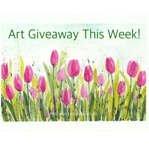 Art Giveaway This Week: Three watercolor tulip paintings from myflowerjournal.com